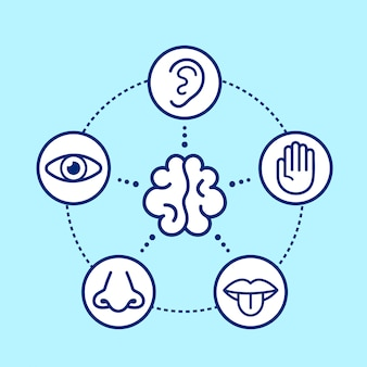 Five human senses surrounding brain.