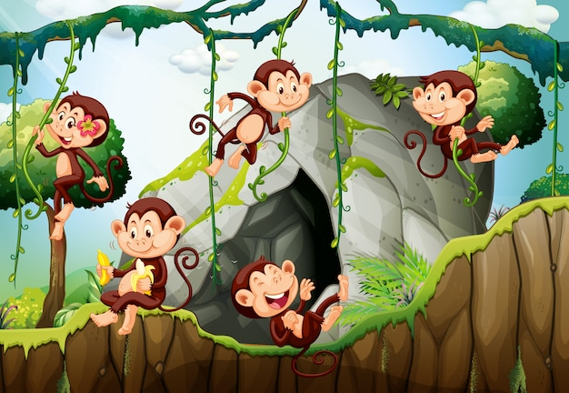 Five monkeys living in the forest