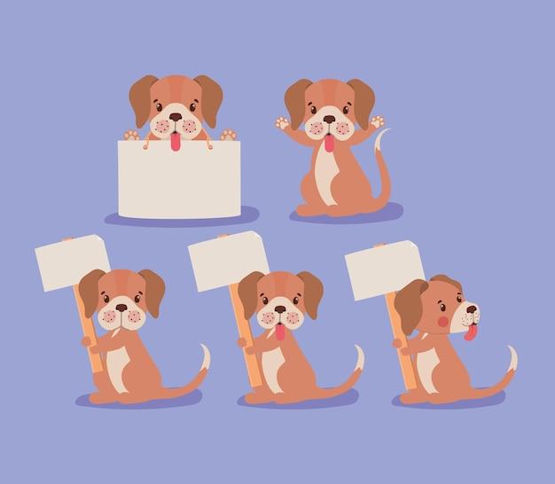 다섯 강아지 디자인