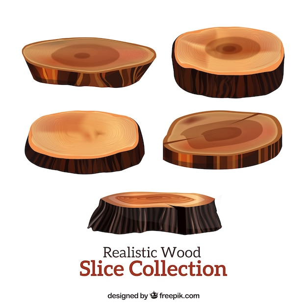 Five realistic slices wooden