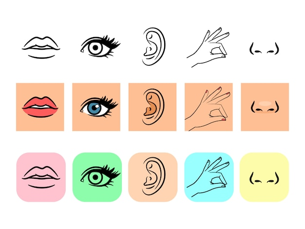Five senses icons