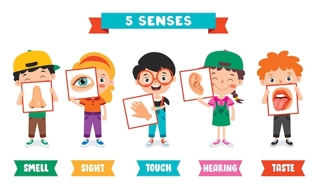Five senses template with kids holding human organs