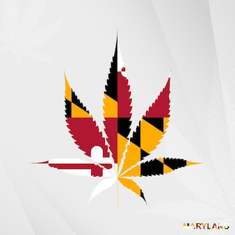 마리화나 잎 모양에 메릴랜드의 국기입니다. 메릴랜드에서 대마초 합법화의 개념입니다.