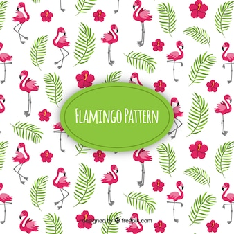Flamenco summer pattern
