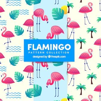 Flamenco summer pattern