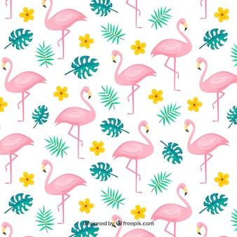 플라멩코 여름 패턴