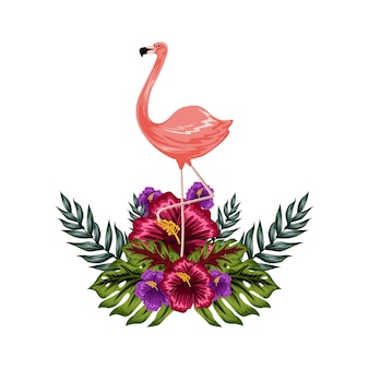 Flamengo with tropical flower illustration