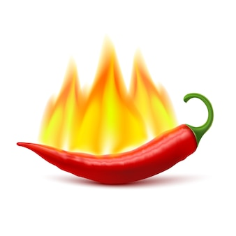 Flaming hot chili pepper pod image