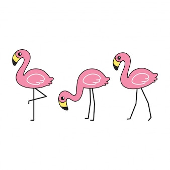 Flamingo cartoon illustration