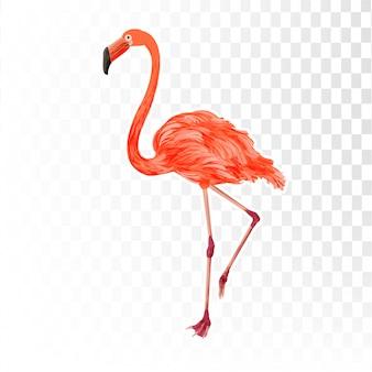 Фламинго элемент 3d стиль