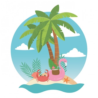 Flamingo float and summer