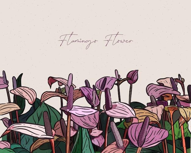 플라밍고 꽃, 손으로 그리는 스케치.