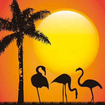 Flamingo over late afternoon background animal