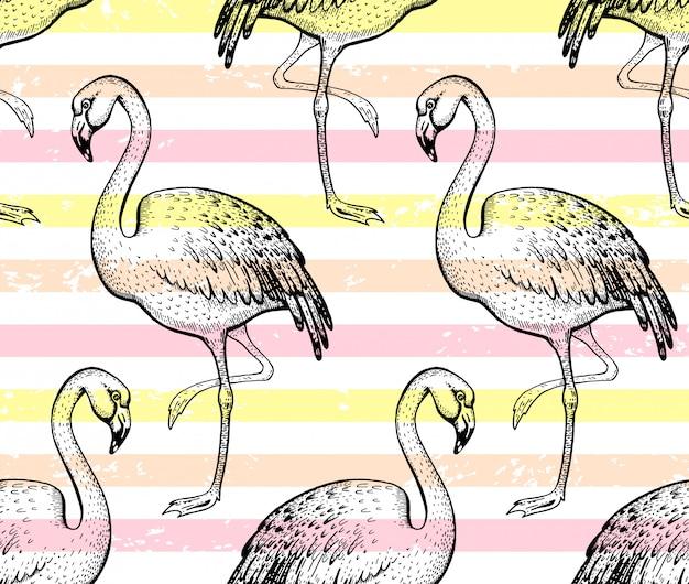 Flamingo seamless pattern, sketch doodle texture.