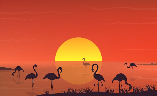 Flamingo silhouette at sunset landscape on lake scene.