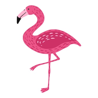 Flamingo standing on one leg isolated. cute bird pink color