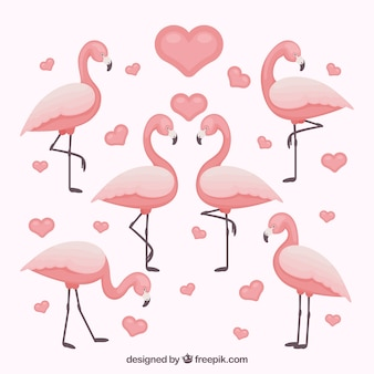 Flamingos collection with different poses in flat style