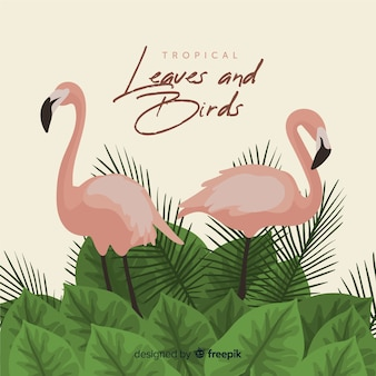 Flamingos and leaves background
