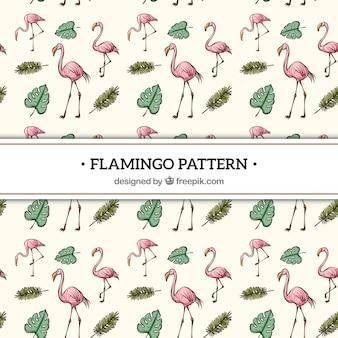 Reticolo dei fenicotteri con stile disegnato delle piante a disposizione