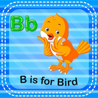 Flashcard letter b is for bird