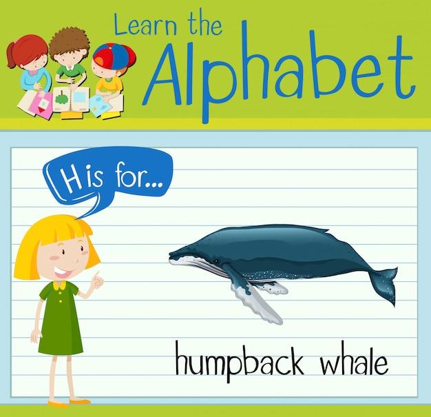 Flashcard 문자 h는 혹등 고래 용
