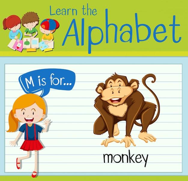 フラッシュカード文字mは猿のためのものです