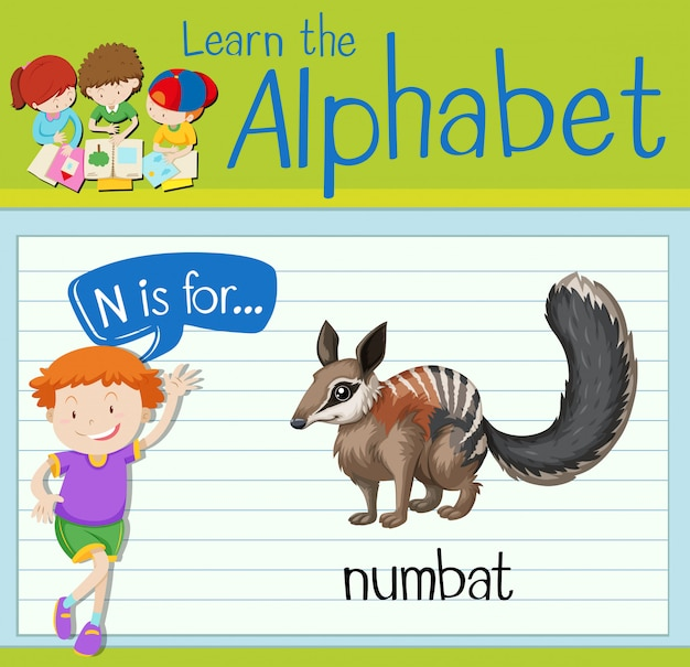 Flashcard letter n is for numbat
