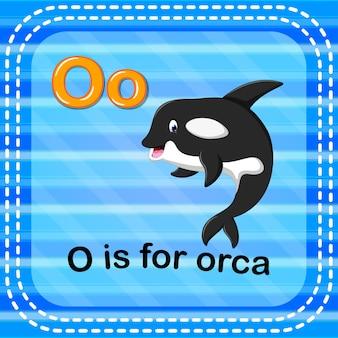 플래시 카드 문자 o는 오카입니다