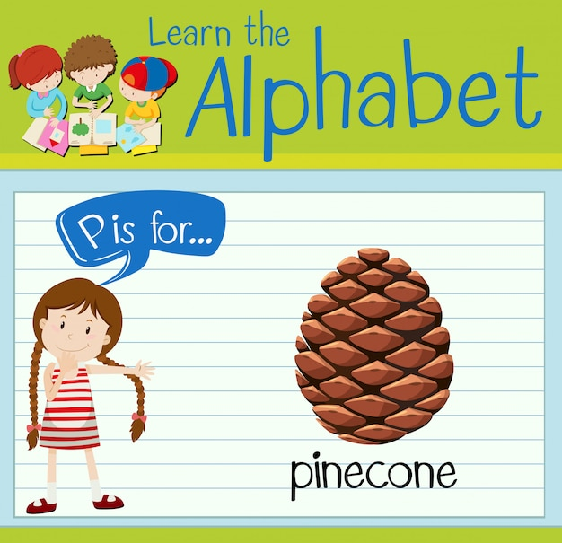 Flashcard letter p is for pinecone
