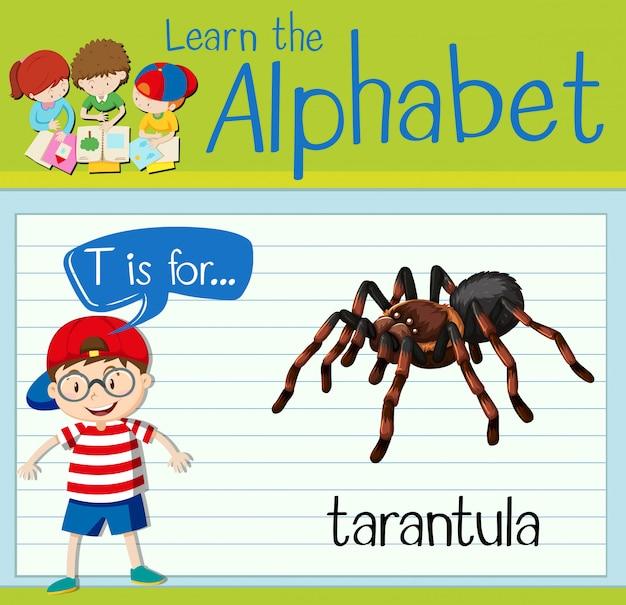 Flashcard letter t is for tarantula