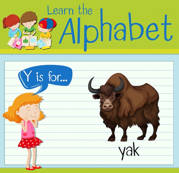 Flashcard letter y is for yak