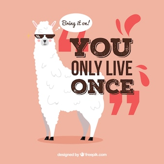 Flat alpaca with quote