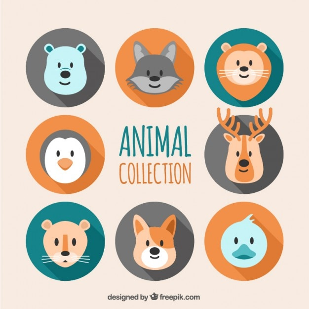 Flat animal heads collection