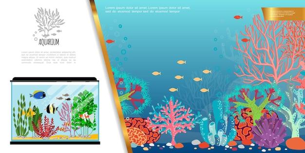 Composizione luminosa acquario piatto con esotici pesci colorati, pietre di alghe e coralli