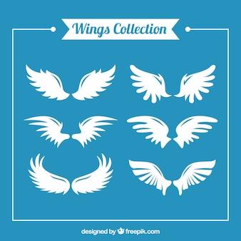 6つの白い羽のフラットアソートメント