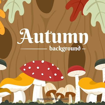 Flat autumn background with mushrooms