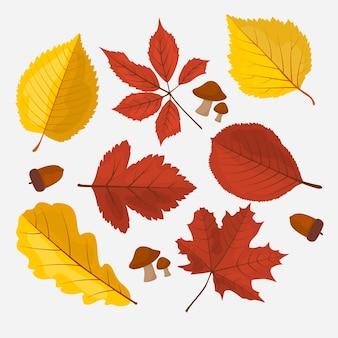 Коллекция плоских осенних листьев