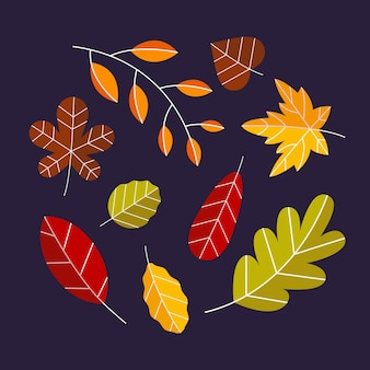 Flat autumn leaves collection