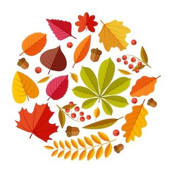 Плоские осенние листья