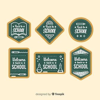 Плоская обратно в школу коллекция значков