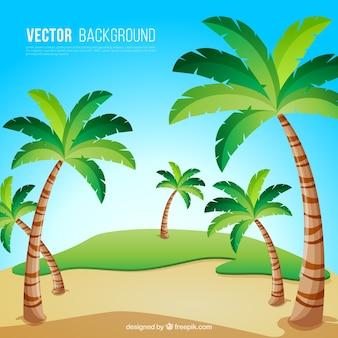 Плоский фон с декоративными пальмами