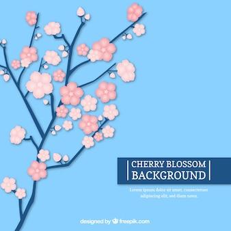 Flat background with sakura