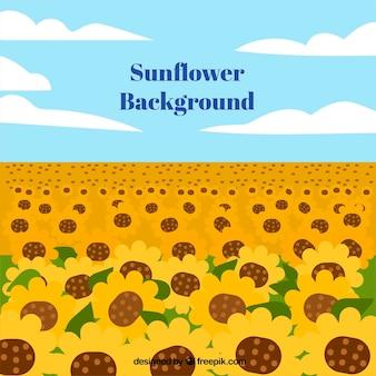 太陽の花のフラットな背景