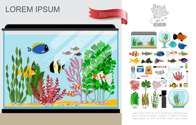 Flat beautiful aquarium composition with bright fishes cleaning equipment food corals seaweed thermometer lamp and stones
