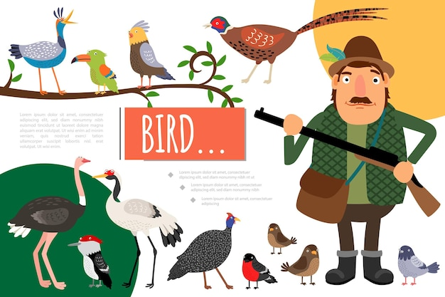 Flat birds colorful natural composition with hunter holding gun pigeon parrot crane sparrow pheasant woodpecker toucan ostrich bullfinch  illustration