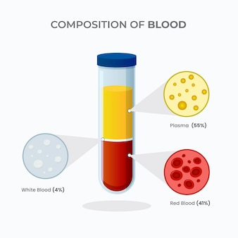 Flat blood infographic with illustrated elements