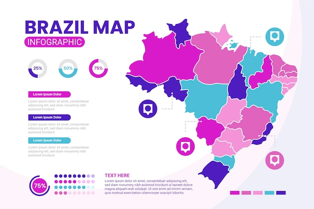 Flat brazil map infographic