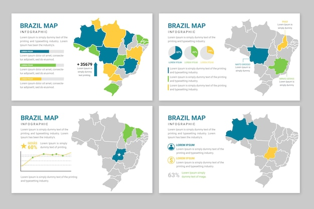 フラットブラジル地図インフォグラフィック