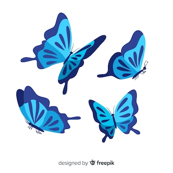 플랫 나비 비행 배경