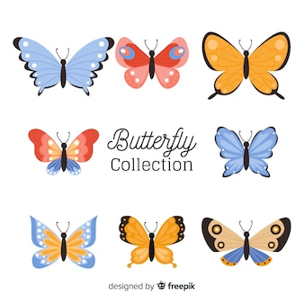 Farfalla piatta
